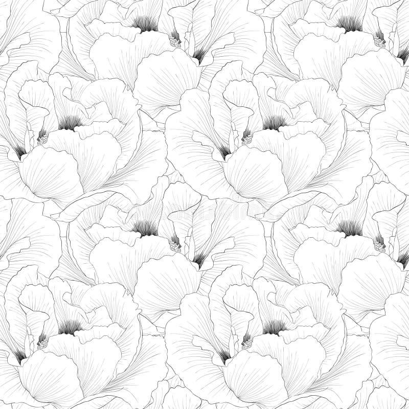 Schönes Monochrom, nahtloser Schwarzweiss-Hintergrund mit Blumen pflanzen Paeonia arborea (Baumpfingstrose) stock abbildung