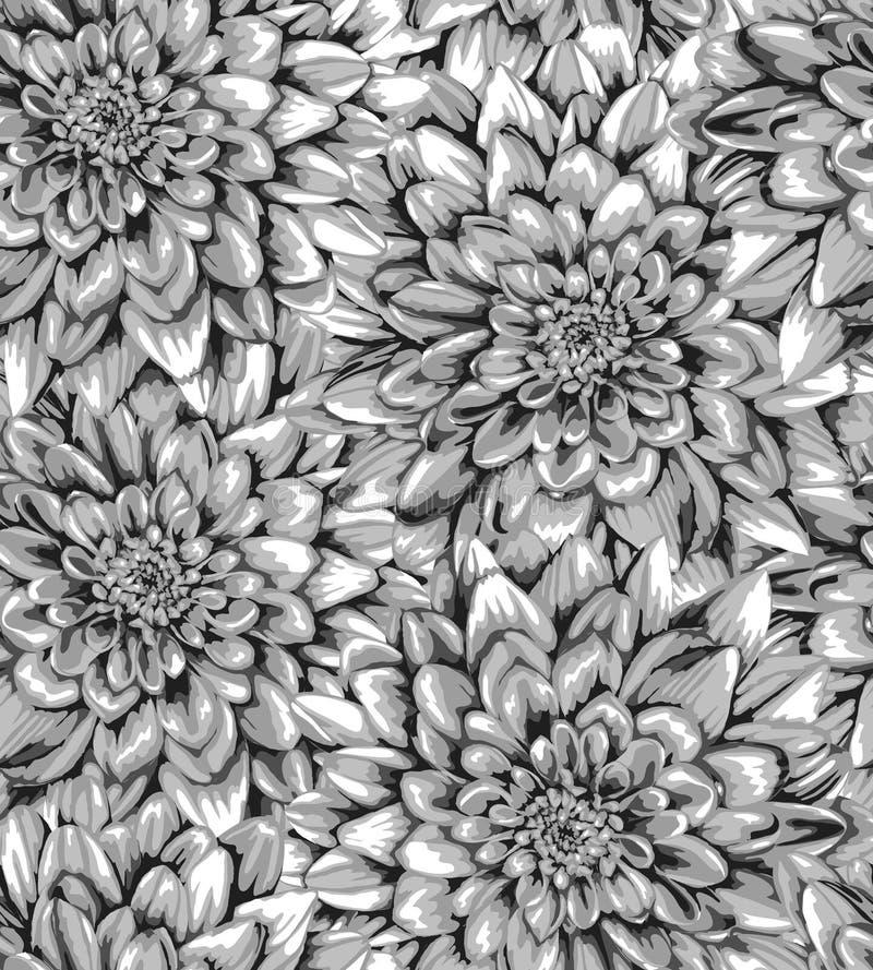 Schönes Monochrom, vertikaler nahtloser Schwarzweiss-Hintergrund mit Dahlie lizenzfreie abbildung