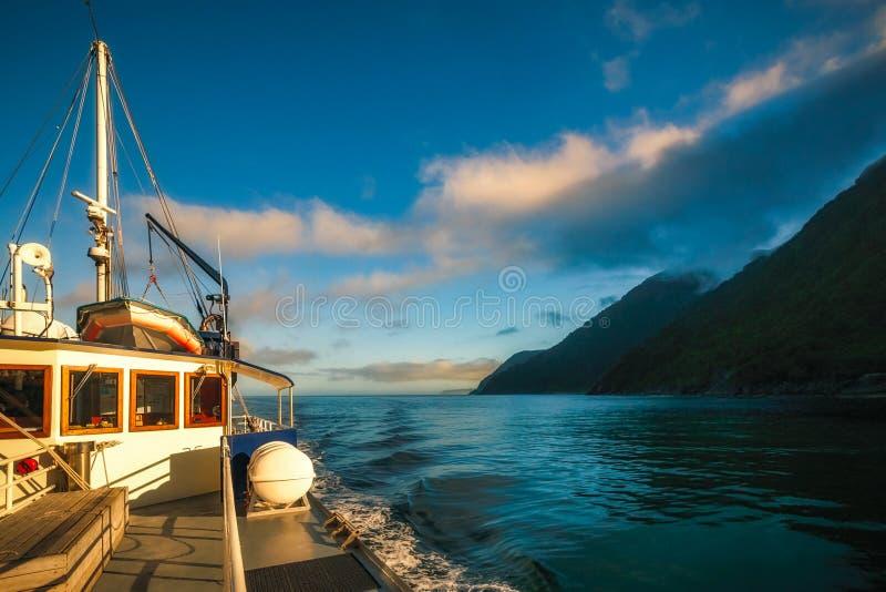 Schönes Morgenlicht auf einer Kreuzfahrt bei Milford Sound lizenzfreie stockfotografie