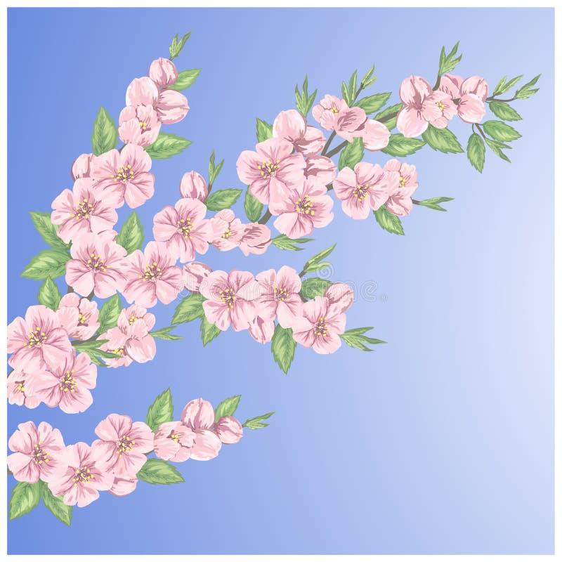 Schönes nahtloses Frühlingsmuster stock abbildung