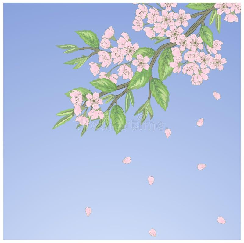 Schönes nahtloses Frühlingsmuster vektor abbildung