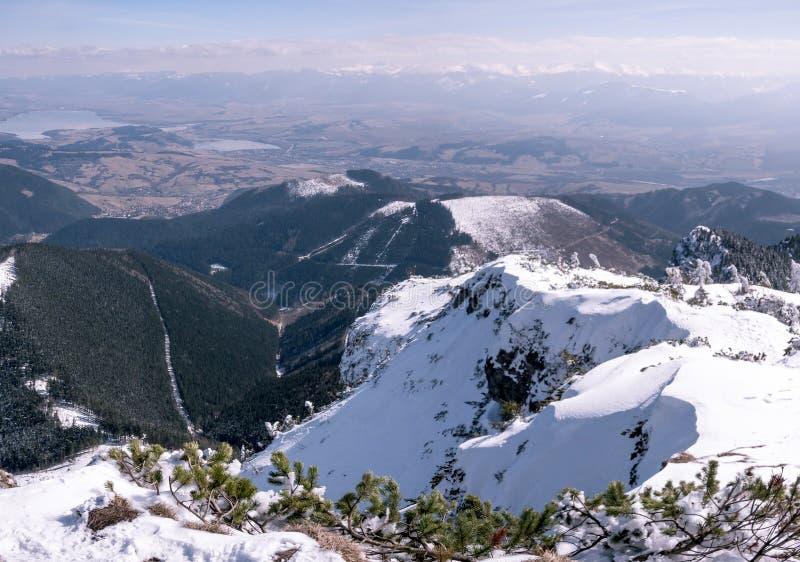 Schönes Panorama von Tatra-Bergen im Winter stockfotografie