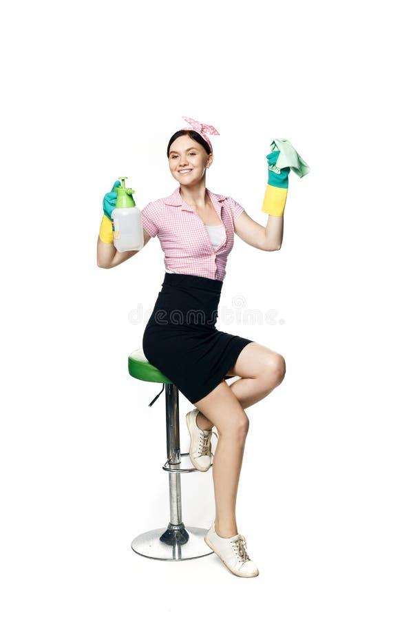 Schönes Pin-up-Mädchen in einem rosa Hemd mit Gummihandschuhen zum Reinigen hält einen Lappen und Spray zum Waschen von Fenstern  lizenzfreie stockfotografie