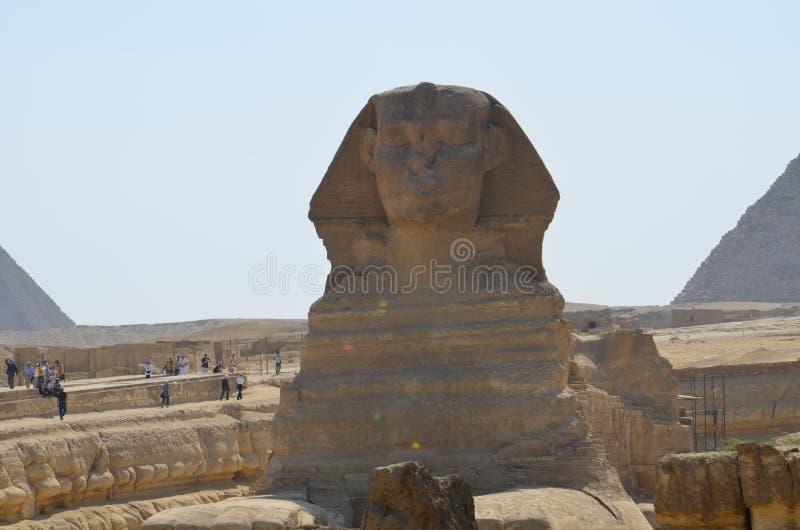 Schönes Profil der großen Sphinxes stockbilder