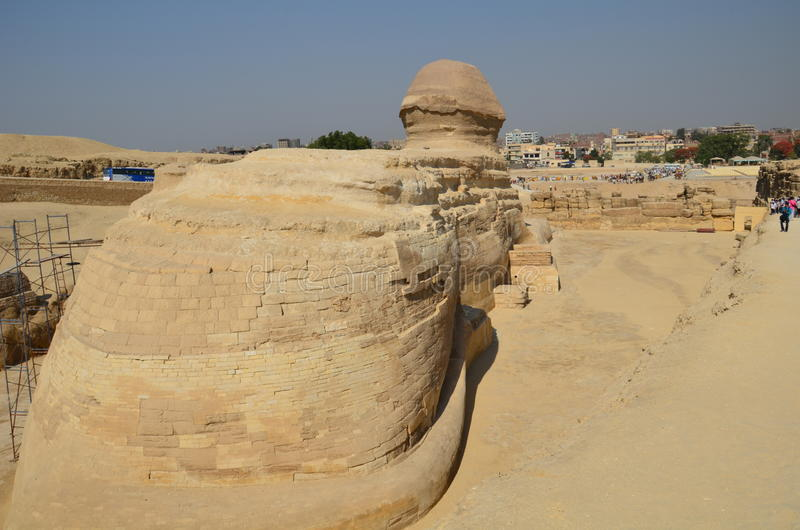 Schönes Profil der großen Sphinxes lizenzfreie stockfotos