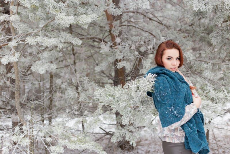Schönes rothaariges Mädchen mit einem Schal auf seinen Schultern gehend in den Winterwald von den Tannen und von Kiefern beruhigt stockfotos