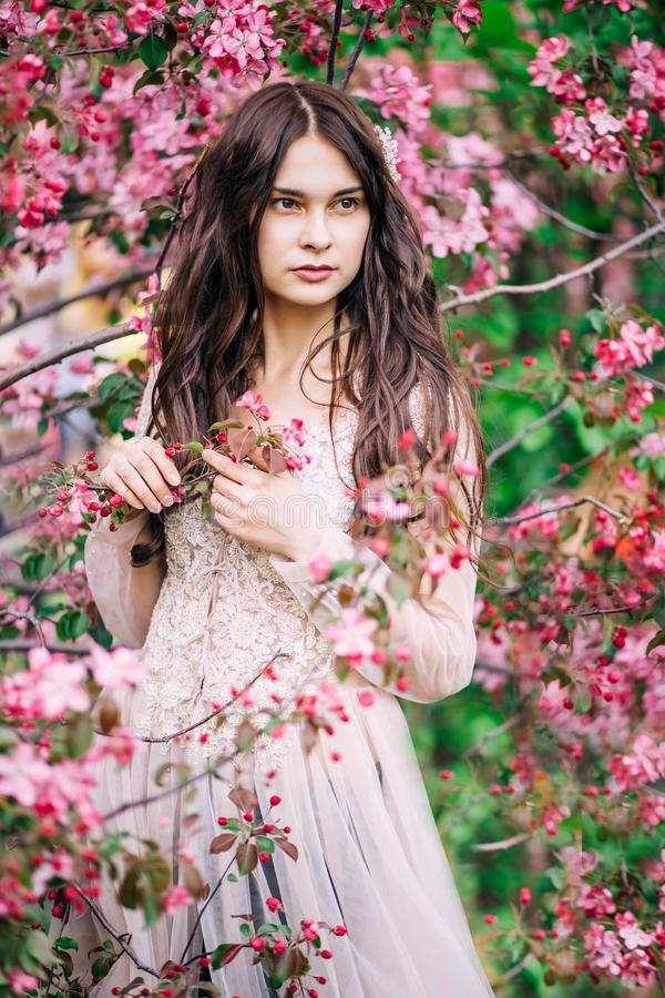 Schönes sexy Mädchen in der Spitzekleiderbeige auf einem Hintergrund von rosa Kirschblüte, die Hände, die Zweige berühren, unters lizenzfreie stockbilder