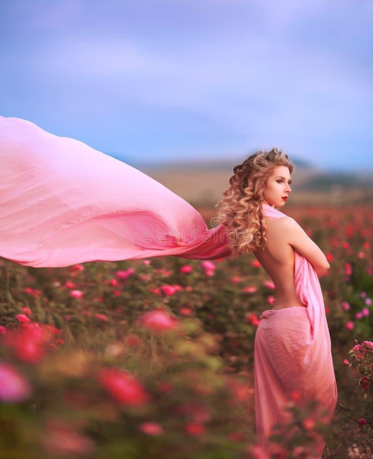 Schönes sexy Mädchen in einem rosa Kleid, das in den Gartenrosen steht lizenzfreie stockbilder