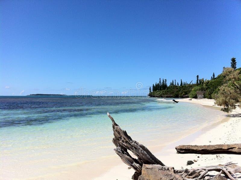 Schönes Strand fitchi stockbild
