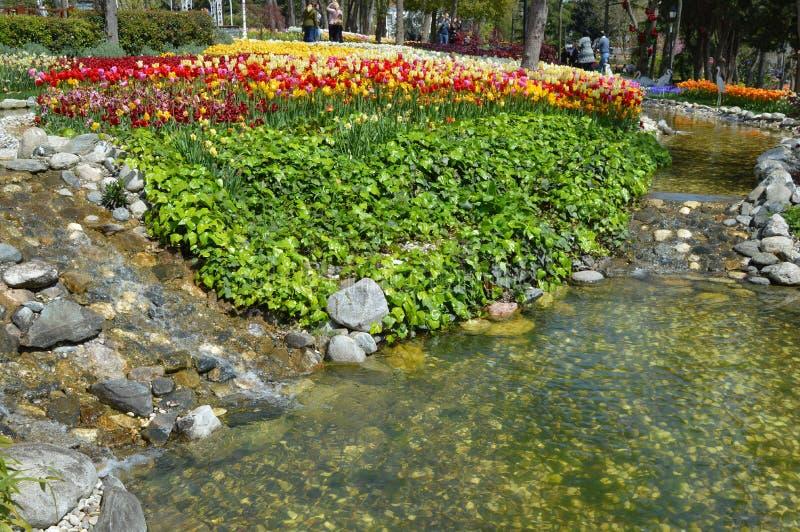 Schönes streamlet und bunte Tulpen im Hintergrund, Emirgan-Park, Istanbul stockfotos