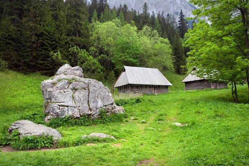 Schönes Tal in den Tatra Bergen stockbilder