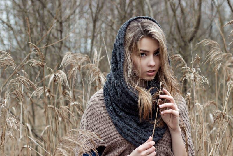 schönes trauriges Mädchen geht auf dem Gebiet Foto in den braunen Tönen stockfotos