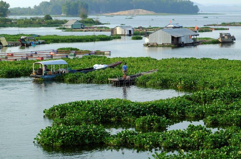 Schönes vietnamesisches Fischerdorf am Fluss Dong Nai, Schwimmhaus, Fischbecken, Wasserhyazinthe stockfotos