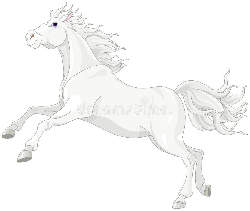 Schönes weißes Pferd vektor abbildung