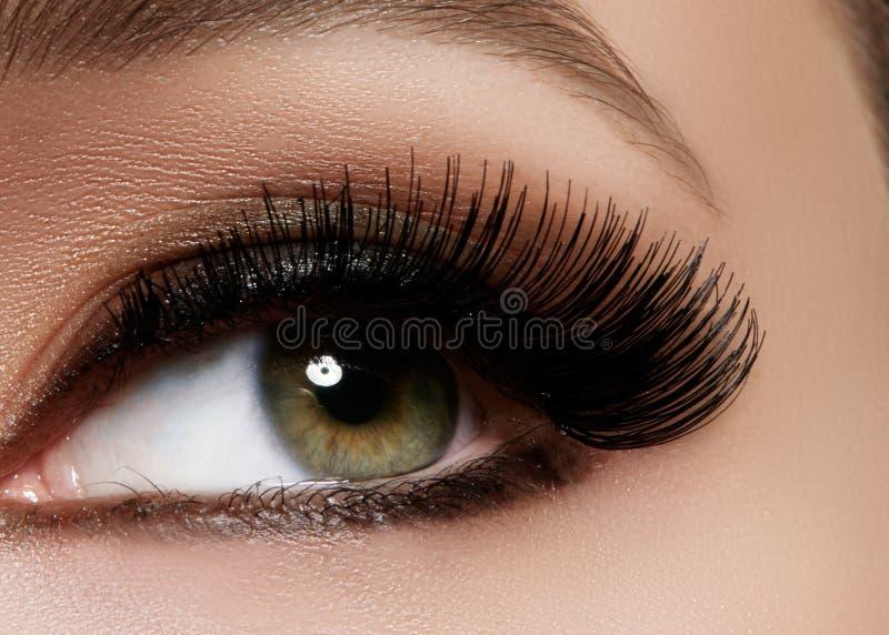 Schönes weibliches Auge mit den extremen langen Wimpern, schwarzes Zwischenlagenmake-up Perfektes Make-up, lange Peitschen Nahauf lizenzfreie stockbilder