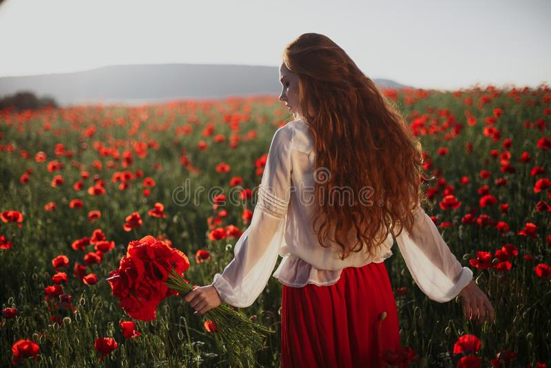 Schönheit auf einem Mohnblumengebiet lizenzfreie stockfotos