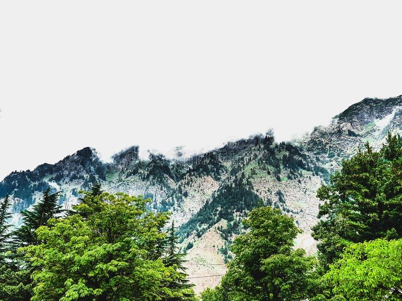 Schönheit der Natur stockfotografie
