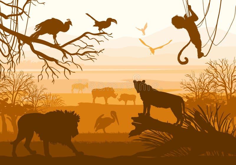 Schönheit der Natur mit wilden Tieren (Löwe, wilder Eber, Ziege, cormo lizenzfreie abbildung