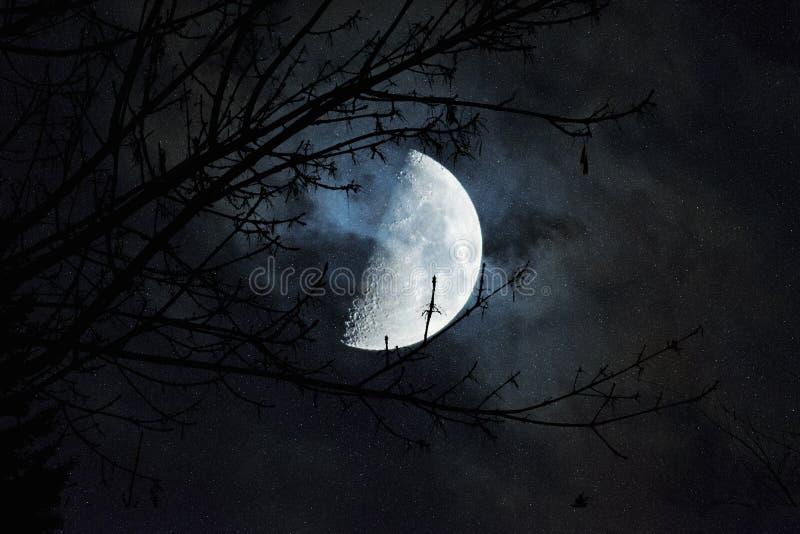 Schönheit des Mondes in einer dunklen Nacht stockfoto
