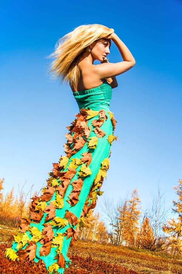 Schönheit in einem Herbstwald stockbild