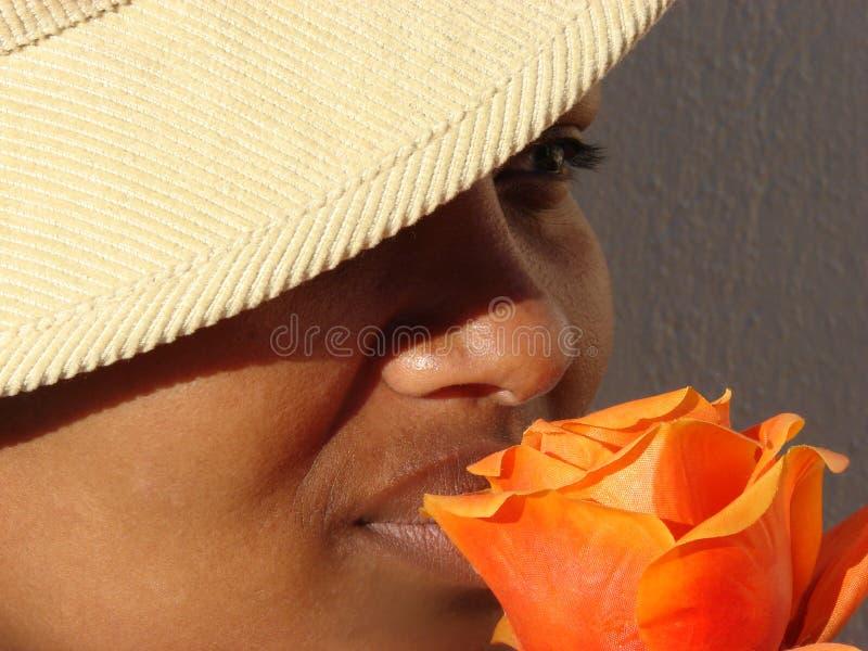 Schönheit in einer Blume stockfotografie
