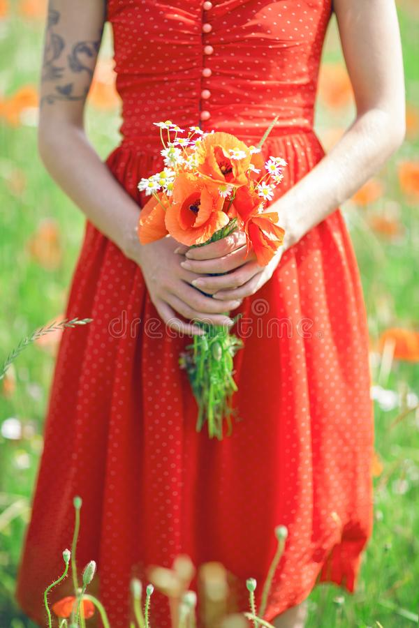 Schönheit im roten Kleid, das auf einem Mohnblumengebiet hält Blumen steht stockfotografie