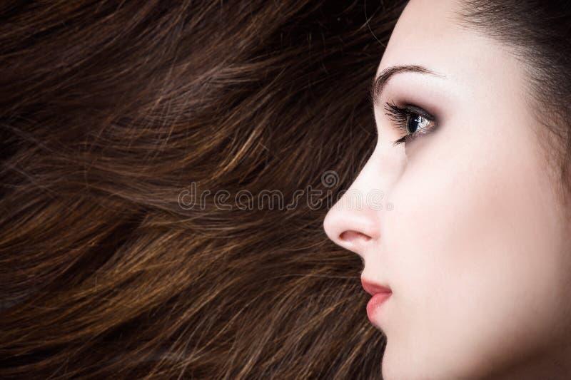 Schönheit mit dem gesunden Haar lizenzfreie stockfotos