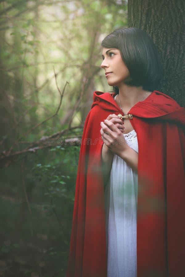 Schönheit mit rotem Umhang im weichen Licht stockfotos