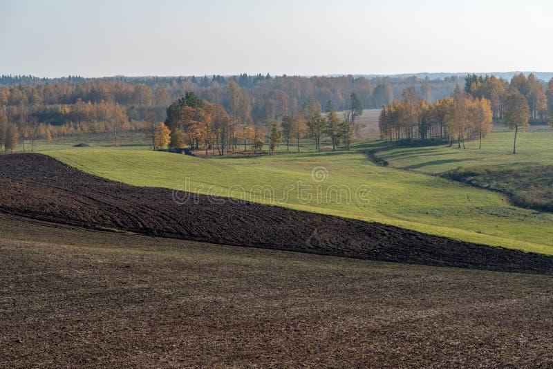 Schönheit von Herbstfarben lizenzfreies stockfoto
