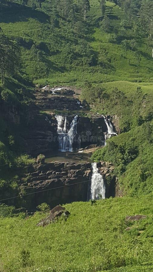 Schönheit von Sri Lanka stockbilder
