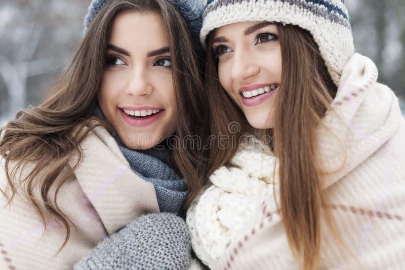 Schönheiten in der Winterzeit lizenzfreie stockfotos