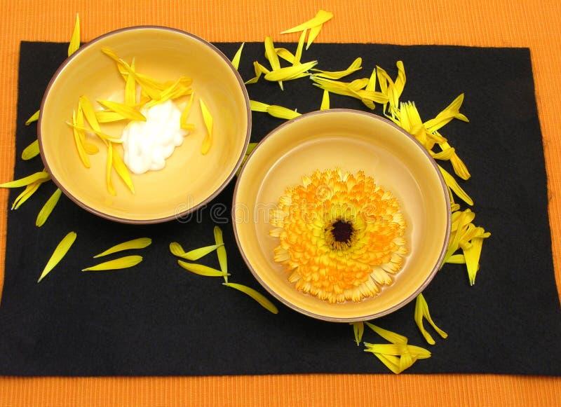 Schönheitsprodukte der Ringelblume lizenzfreie stockbilder
