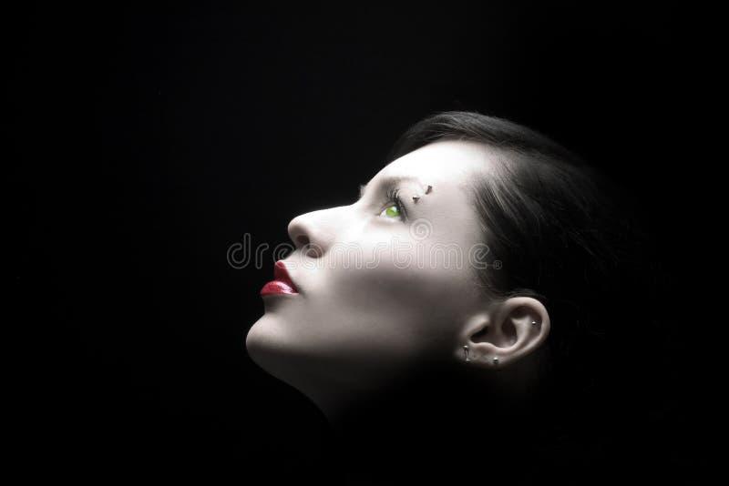 Schönheitsprofil stockbild
