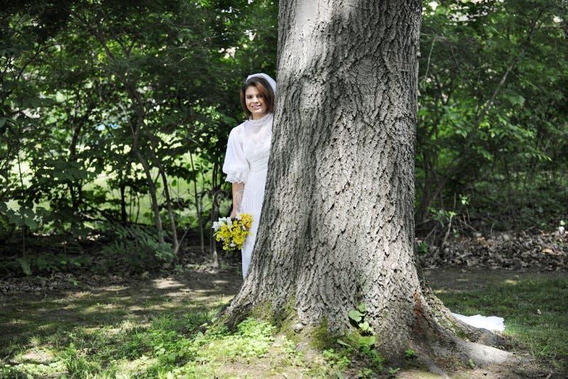 Schüchterne Braut stockfotografie