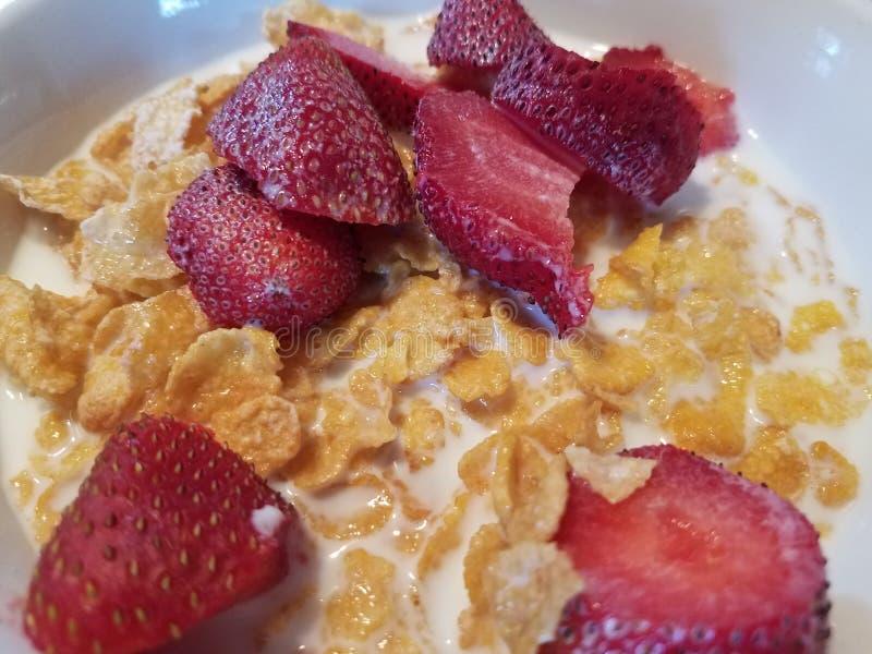 Schüssel Getreide mit Erdbeeren und Milch lizenzfreie stockfotografie