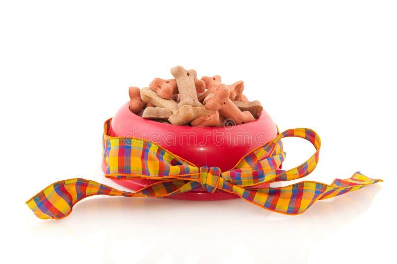 Schüssel mit Hundeplätzchen lizenzfreies stockfoto
