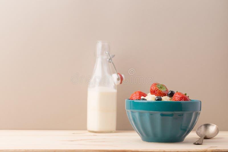 Schüssel mit Jogurt und Milchflasche lizenzfreie stockfotos