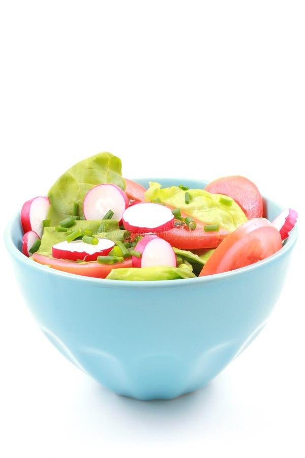 Schüssel Salat lizenzfreie stockfotos