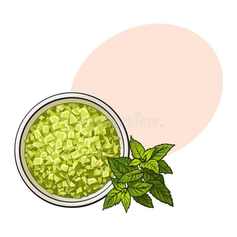 Schüssel von organischem, Grün aromatisch, Badesalz, Draufsichtillustration stock abbildung