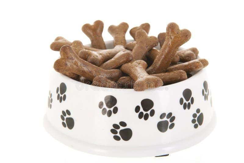 Schüsselhundefutter lizenzfreie stockfotos