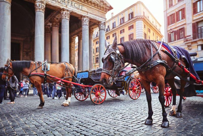 Sch?ne alte Fenster in Rom (Italien) Pferd am Rundbauquadrat Marktplatz della Rotonda lizenzfreie stockbilder