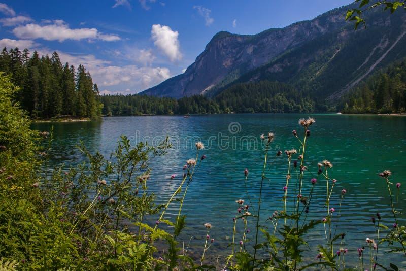 Sch?ne Ansicht von See Tovel, das gr??te von allen nat?rlichen Seen in Trentino im Park Adamello Brenta stockfotos