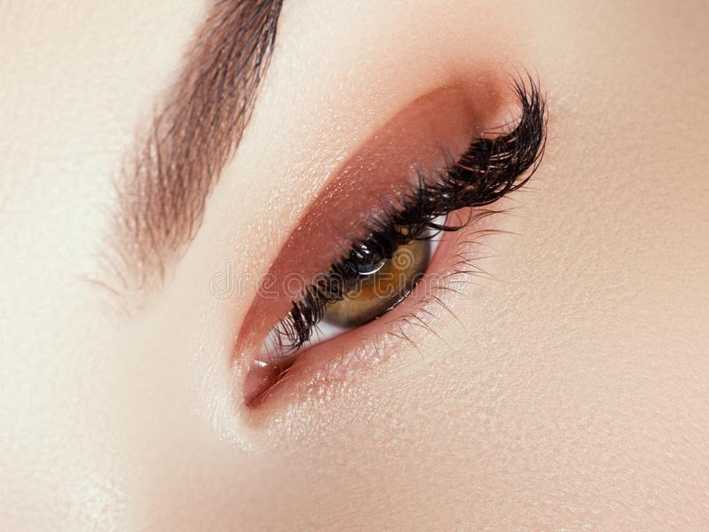 Sch?ne Gesichts-Verfassung Lange nat?rliche Wimpern Perfekte Make-upnahaufnahme Teil des weiblichen Gesichtes Zauberpeitschen und stockfotografie
