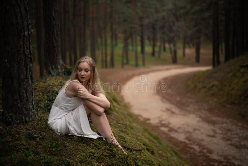 Sch?ne junge Blondine, die in der Waldnymphe im wei?en Kleid im immergr?nen Holz sitzen lizenzfreie stockfotos