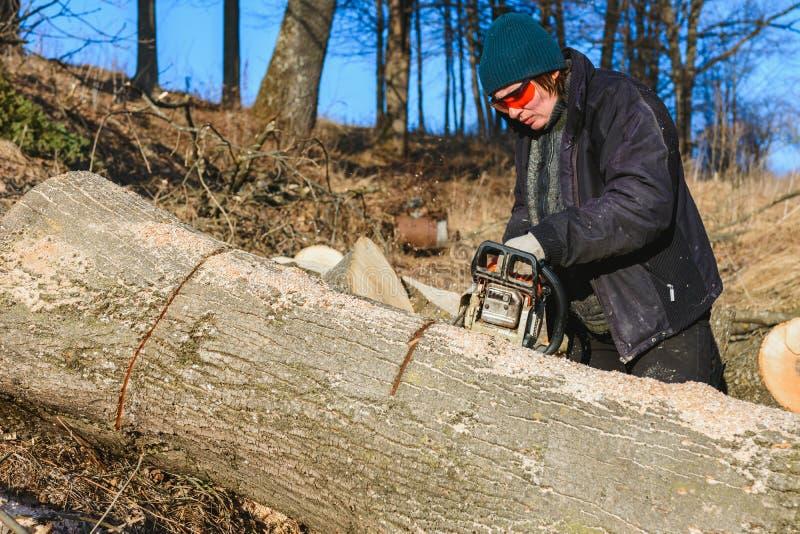 Sch?ne junge Frau in den Gl?sern schneidet einen gro?en Baum der Asche auf Holz f?r Winter lizenzfreie stockfotografie