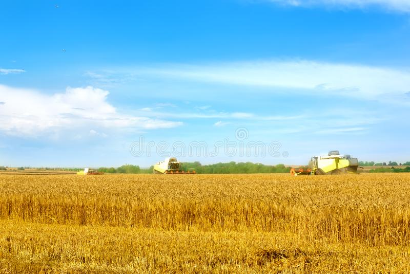 Sch?ne Landschaftlandschaft M?hdrescher auf einem Weizenfeld stockfotos