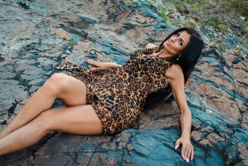 Sch?ne sexy Frau, die im Leoparddruckkleid auf dunklem Hintergrund aufwirft stockfoto