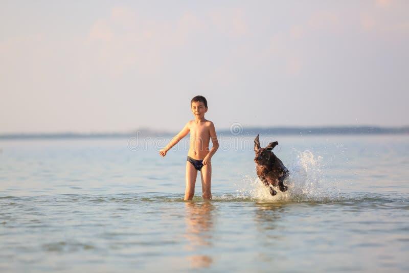Sch?ne sonnige Sommerlandschaft Am Tag ist der kleine Junge das Spielen und laufend springt mit dem jagenden braunen Hund am See stockfotos