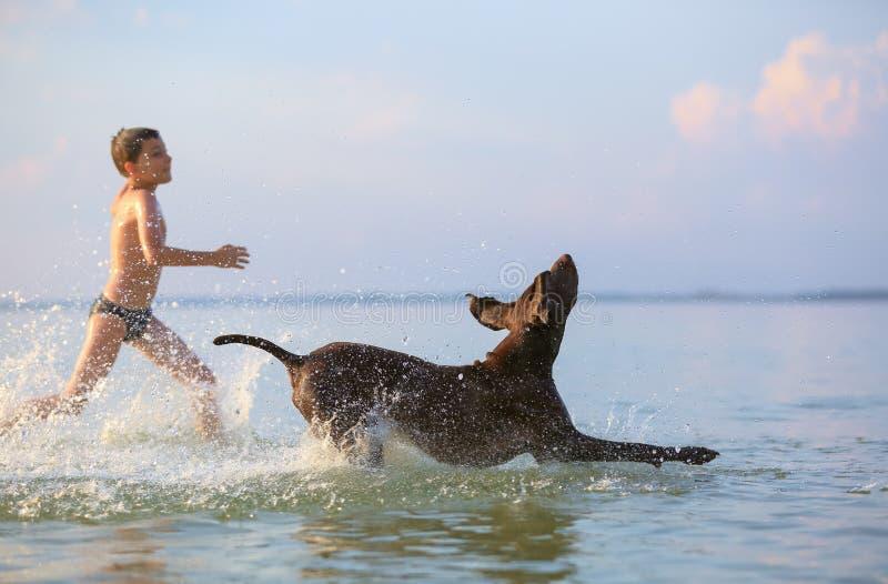 Sch?ne sonnige Sommerlandschaft Am Tag ist der kleine Junge das Spielen und laufend springt mit dem jagenden braunen Hund am See stockfotografie