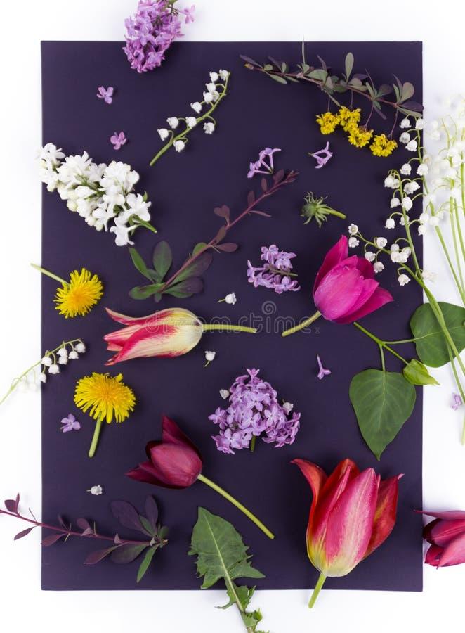 Sch?ner Blumenstrau? von Blumen im Vase lokalisiert stockbilder